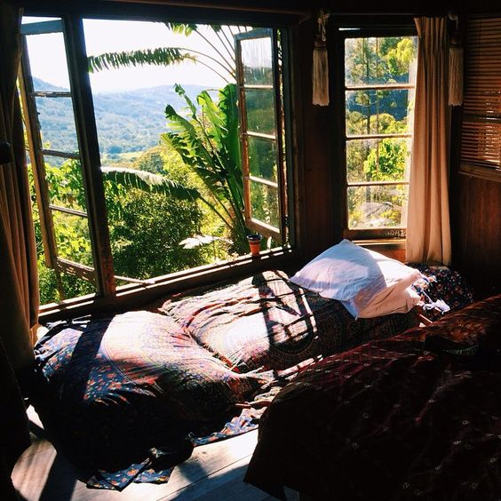 Morning light in the tree house