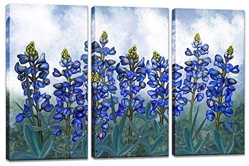 Amazon Com Visual Art Decor 3 Pieces Blue Flowers Paiting Canvas Wall Art Texas Bluebonnets Floral Close Up Picture Texas Wall Art Wall Canvas Canvas Wall Art