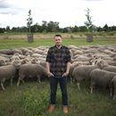 Birgit's Wollmarkt - Schwarzwaldgarn schreibt: Wer sagt dass es nachhaltige Merinowolle aus Deutschland nicht gibt? Falsch!