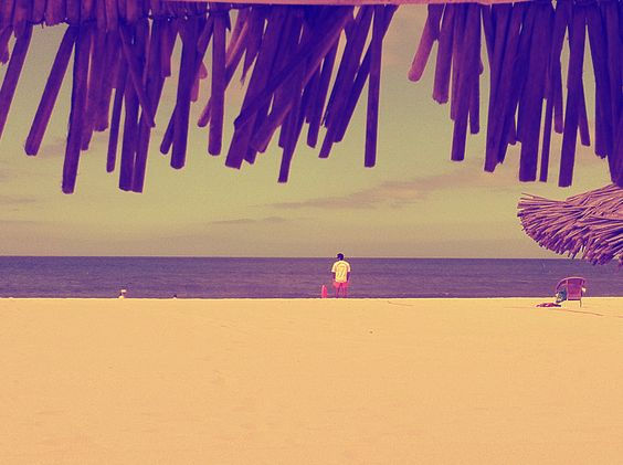 Beach life guard / Fonte da telha