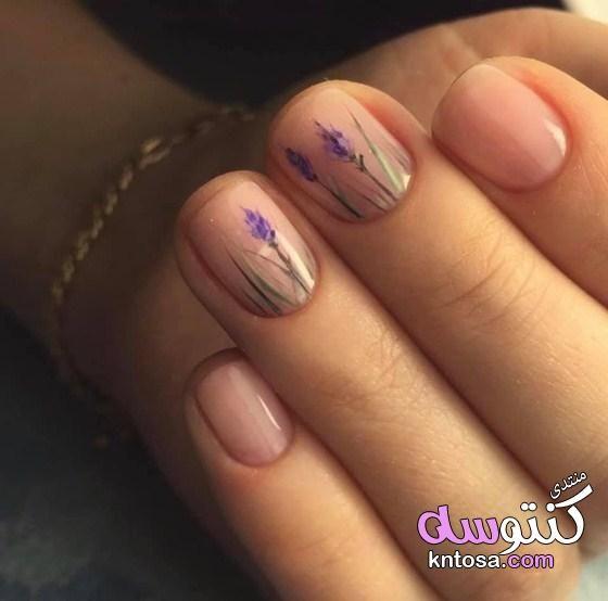 طرق تزيين أظافر اليد القصيرة بالصور أفكار رسومات للأظافر القصيرة مناكير للأظافر القصيرة اشكال اظافر Kntosa Com 03 19 1 Natural Nails Solid Color Nails Manicure