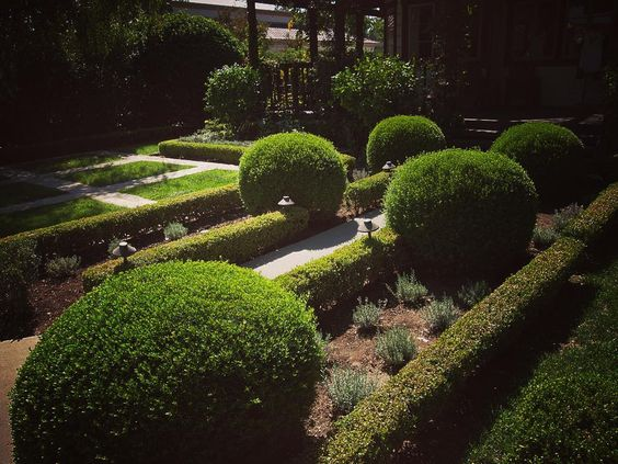 Formal garden design on Ojai California #ojai #california #garden #design #landscape #formal #plants #nature #outdoors