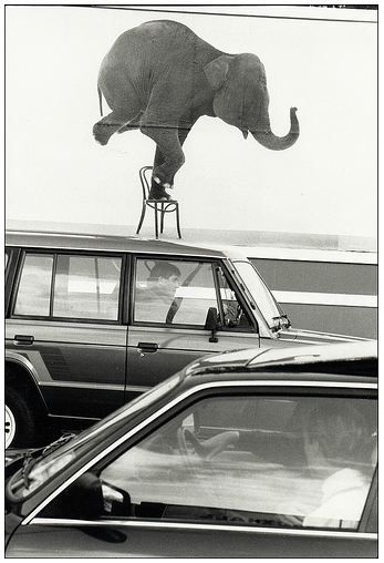 Nils Jorgensen | (Ironic) Street Photography rad frame!: