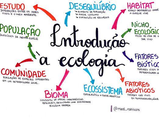 Visualizacao Em Miniatura De Um Item Do Drive Estudos Para O Enem Planos De Estudo Enem Ecologia Enem