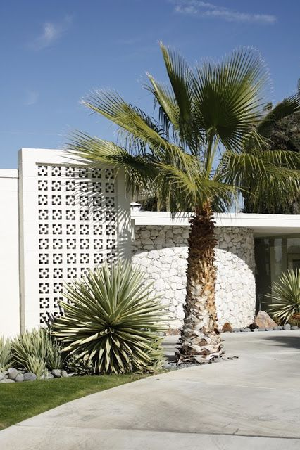 mid-century modern white breeze block and desert landscaping:
