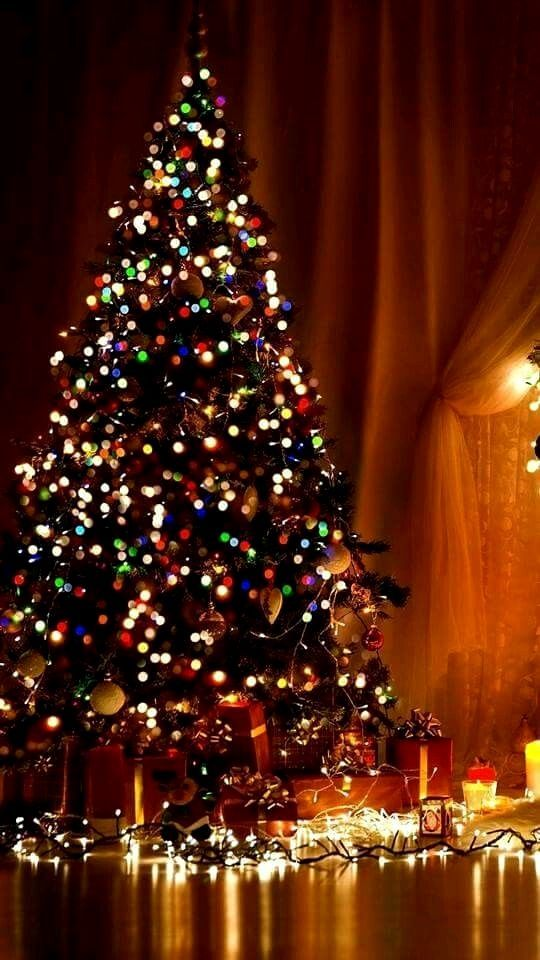 Pin By Best Of Wallpaper 4k On Jul In 2020 Christmas Tree Wallpaper Christmas Wallpaper Christmas Wallpaper Free