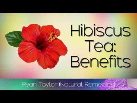 The Health Benefits Of Hibiscus Tea And It S Uses Subtitles