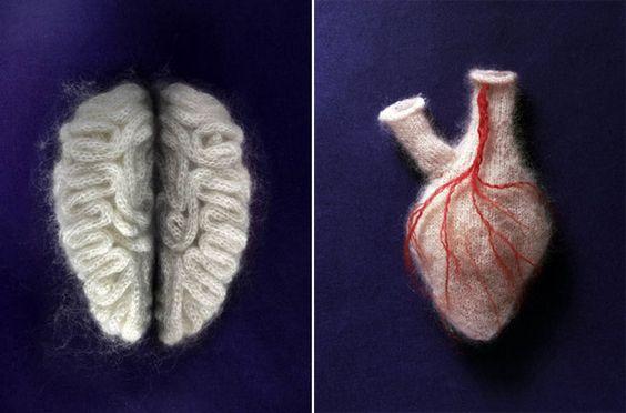 sarah illenberger Knit anatomy