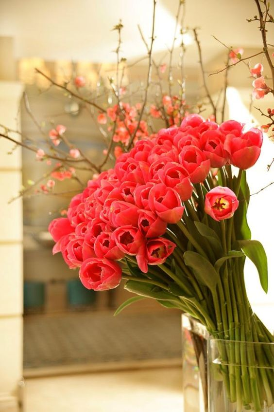 .: Flowers Bouqets, Gorgeous Flowers, Flowersandgarden Photos, Lobby Flower, Gorge Tulips, Beach Wedding, Coral Tulips