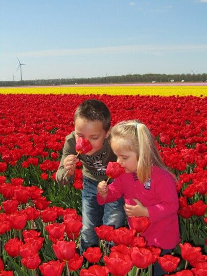 Sweet kids with the tulips in Holland