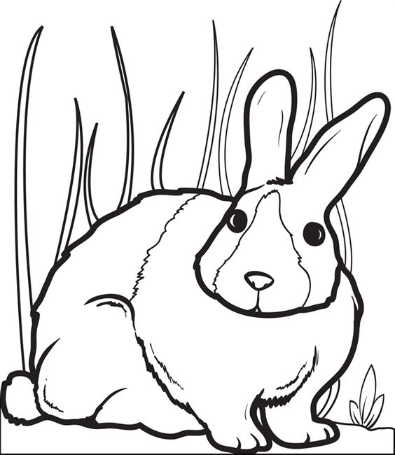chubby bunny coloring pages - photo#26