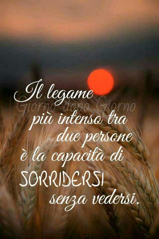 Frasi D Amore Belle Per Whatsapp O Facebook Statisticafacile It Italian Quotes How To Show Love Italian Humor