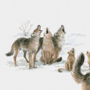 ¡Una pandilla de lobos!  Leales e inalcanzables. Vuestra familia proviene de un noble e influyente clan de mucha antigüedad.  Tenéis un cabeza de familia que decide y se ocupa de todo y en él confiais. Así de bien os ha ido ¡enhorabuena!
