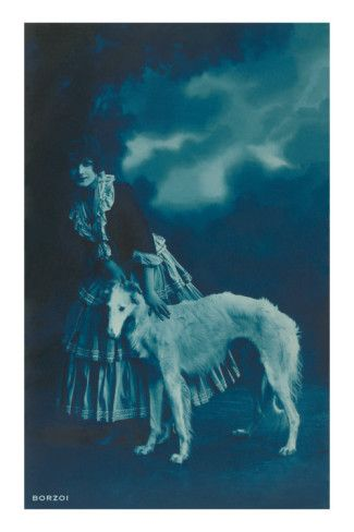Woman in Gypsy Outfit with Borzoi Premium Poster