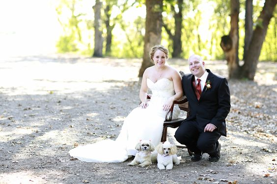 Fall Wedding Couple With Their Dogs