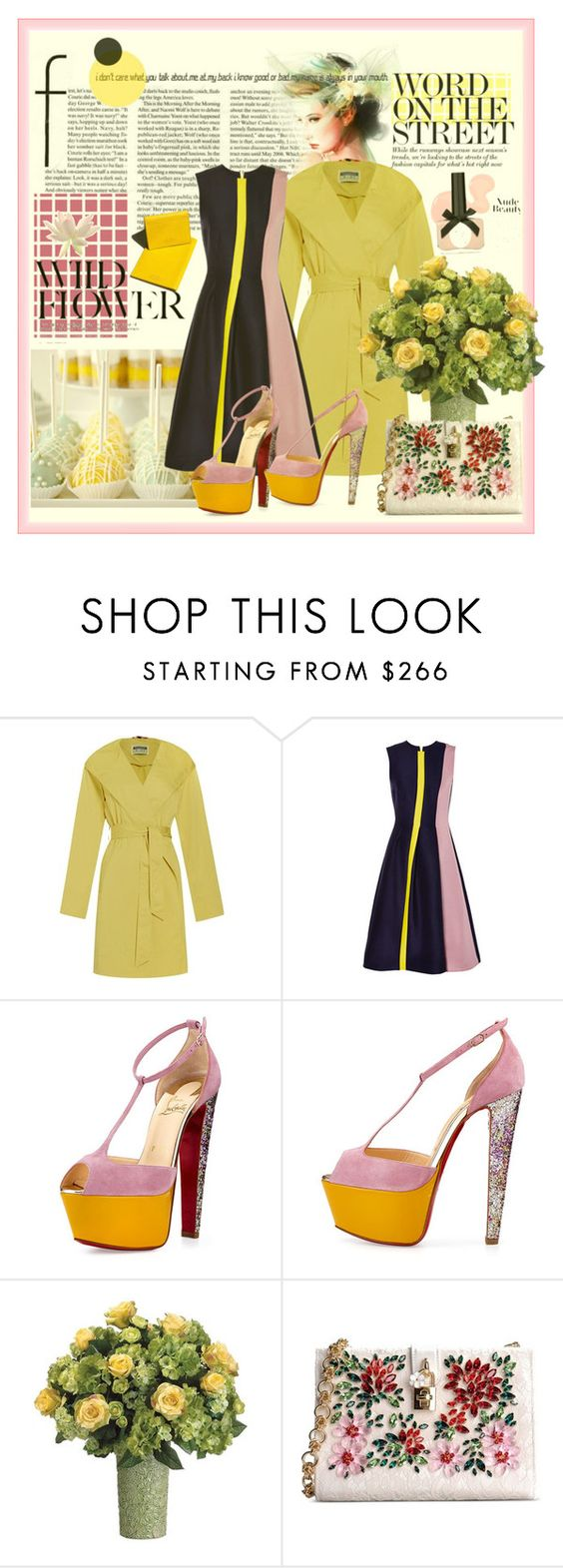 """""""Untitled #711"""" by talatay ❤ liked on Polyvore featuring Cloud Nine, Roksanda, Garance Doré, Christian Louboutin, Allstate Floral and Dolce&Gabbana"""