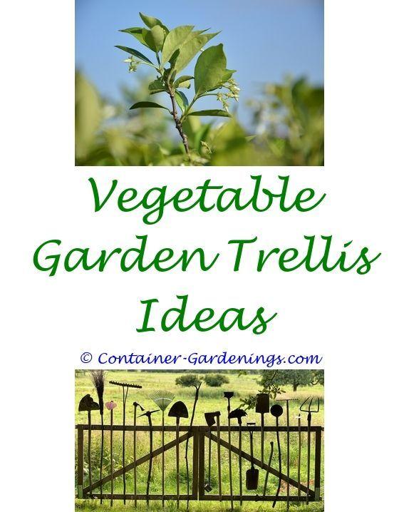 Terrace Garden Ideas In Tamil Washing Line Ideas For Small Gardens Rose Gardening Tips In Malay In 2020 Garden Design Pictures Garden Landscaping Diy Backyard Garden