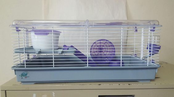 Large Purple Hamster Cage 20109011 Trudy Comes with Everything You Need | eBay