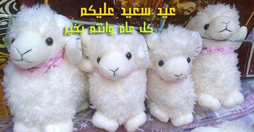 صور تهنئة خروف عيد الأضحي Teddy Bear Teddy Greetings