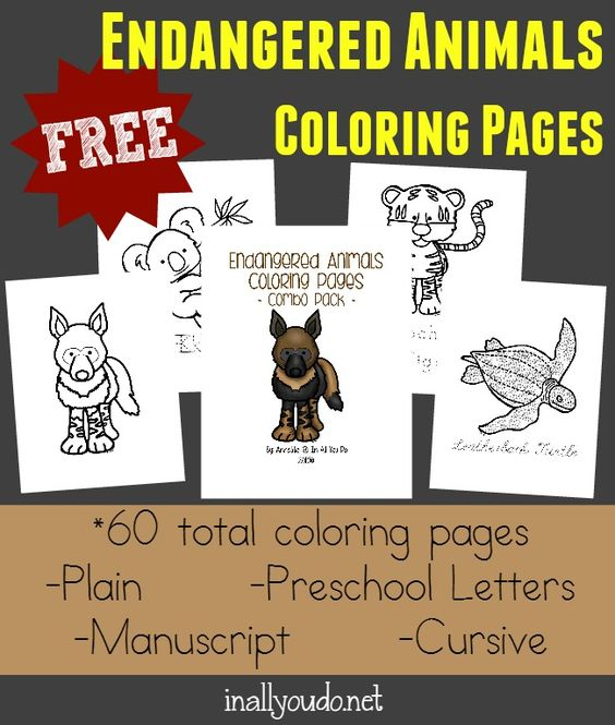 Emergent readers Animal coloring