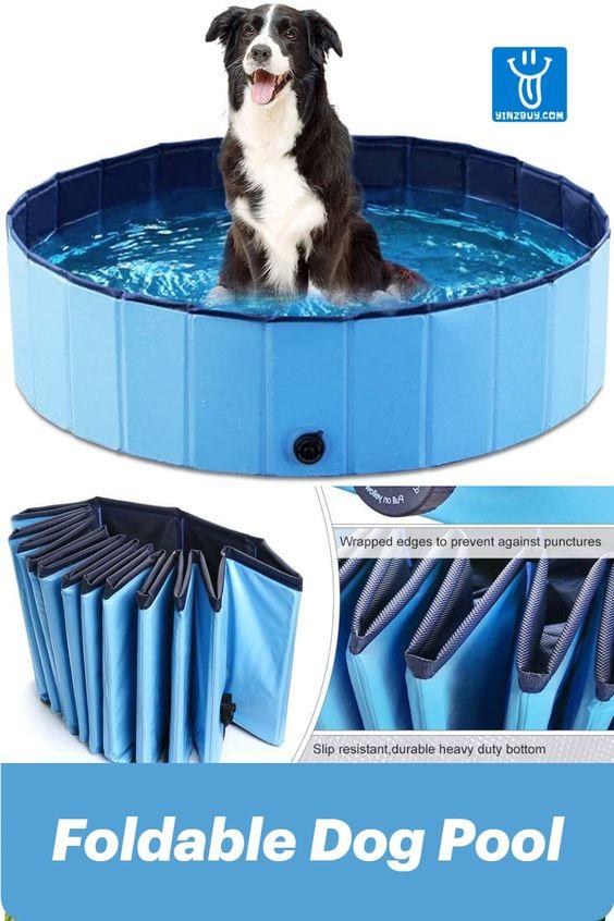 Foldable Dog Pool In 2020 Dog Pool Dog Bath Pets