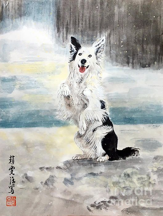 Happy Puppy In The Snow By Carmen Lam With Images Dog Portraits Painting