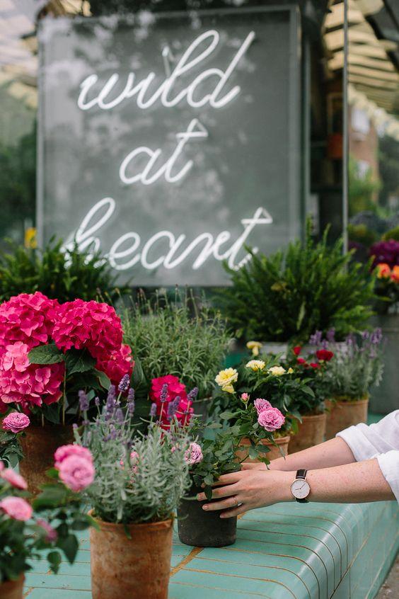 Wild At Heart Florist, Notting Hill //