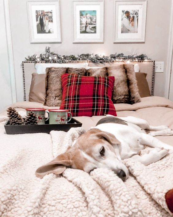 Cozy Christmas Bed! I gave my bed a mini makeover for the holidays! All of these cozy pieces are under $100 including the headboard and duvet set!