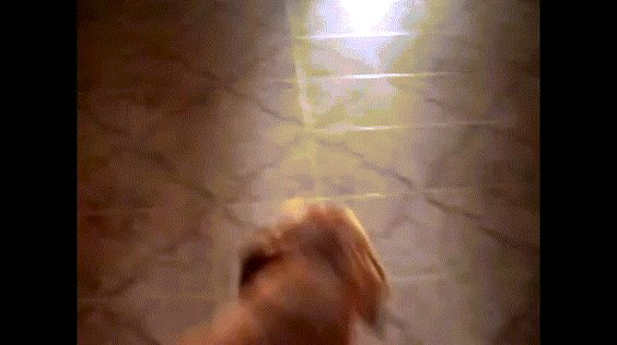 Some Funny Gifs.