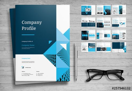 Stock Template Of Company Profile Layout With Blue Accents Search More Similar Templates At Ad In 2020 Company Profile Design Company Profile Template Company Profile