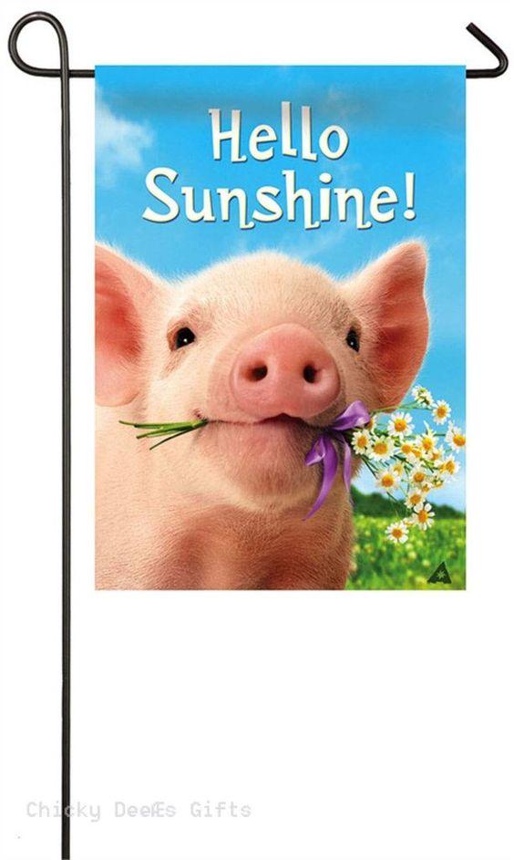 Evergreen Garden flag Pig Holding Flowers Hello Sunshine 14s4162