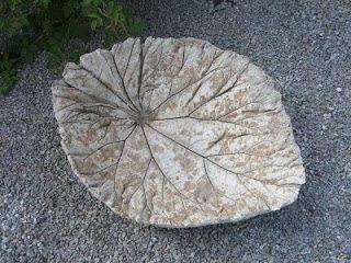 Creatief besparen en meer rabarberblad van beton tuinidee pinterest van - Origineel tuin idee ...