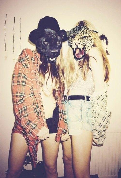 Plaid Cats