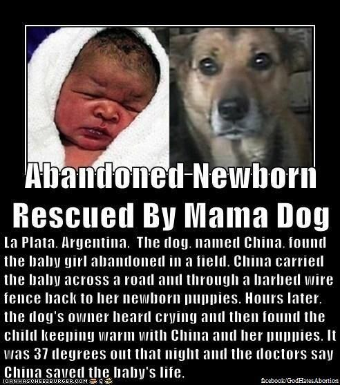 Awww what a great story!!  It's like the Littlest Hobo!! : )):