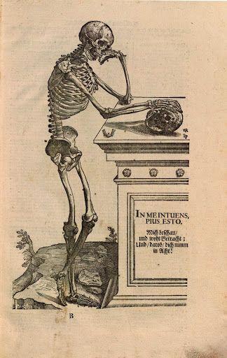 Zergliederung deß menschlichen Körpers auf Mahlerey und Bildhauer-Kunst gerichtet. Die Figuren von Titian gezeichnet. - Google Arts & Culture