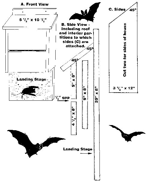Instructions for building a bat house. I need a couple in ...