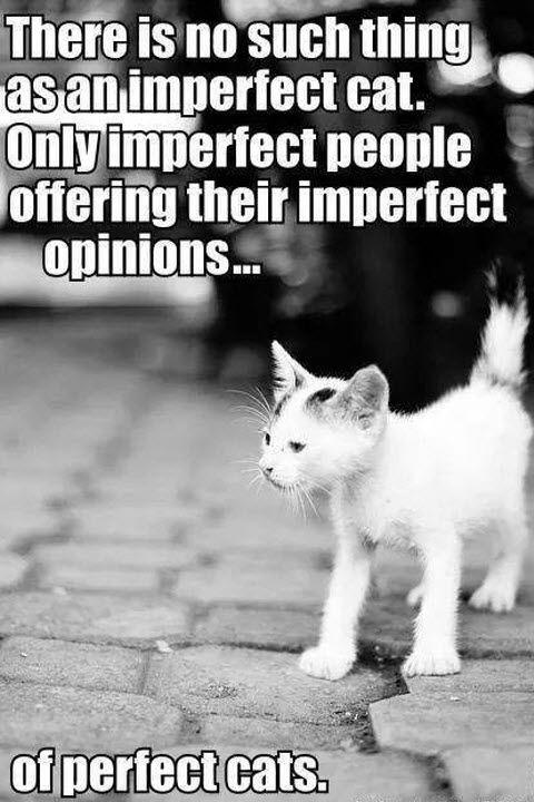 So so true……..: