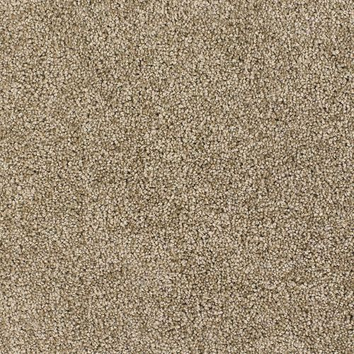Dreamweaver Carpet Product Name Luxuriant Style Code 7400 Carpetsempire Carpet Samples Textured Carpet Rugs