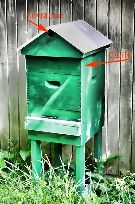Langstroth hive with quilt box and ventilated gabled roof showing bumble bee entrance.