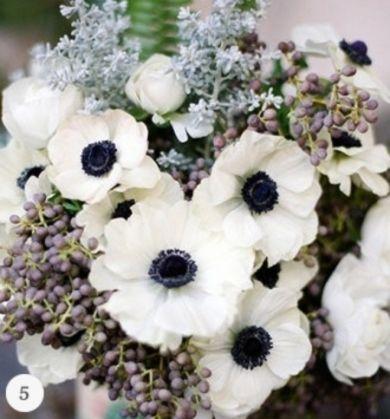 White flower with blue center wedding pinterest white flowers white flower with blue center mightylinksfo