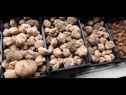 فقع كما العراق الرطبة وصل مرسين تركيا Youtube Food Vegetables Breakfast