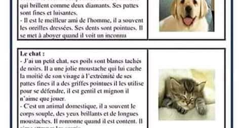 وضعيات ادماجية حول الحيوانات مادة اللغة الفرنسية السنة الخامسة ابتدائي الجيل الثاني French Language Animals Language