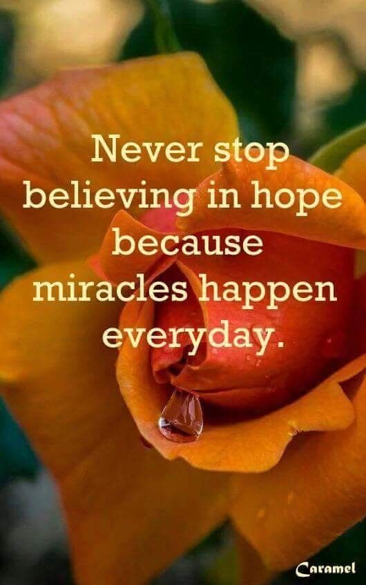Hope Springs Eternal Affirmation Quotes Fact Quotes Uplifting Quotes Positive