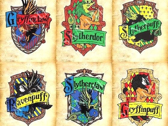 What Would Your Hybrid House Be Follow Us Worldofhogw Harry Potter Bucher Harry Potter Quiz Harry Potter Hauser