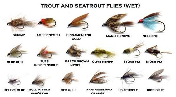The usk valley walk fishing pinterest the o 39 jays for Types of fly fishing flies