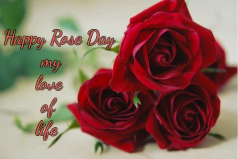Cute Happy Rose Day Wishes For Husband Boyfriend Valentines Day Quotes Images Happy Valentine Day Quotes Rose