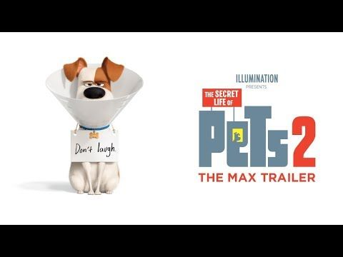 New Trailers The Secret Life Of Pets 2 Mortal Engines Mowgli And More Secret Life Of Pets Secret Life Good Movies To Watch
