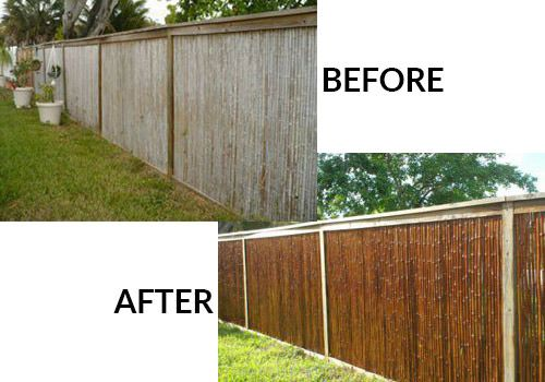 Bamboo Stain Sealer And Protectant For Fencing Poles Bamboo Fence Bamboo Decor Bamboo