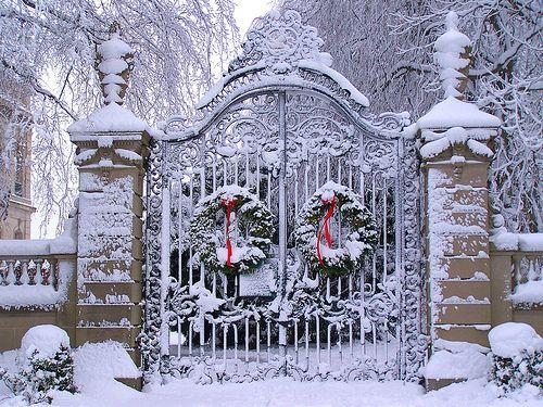 love, love, love this gate...