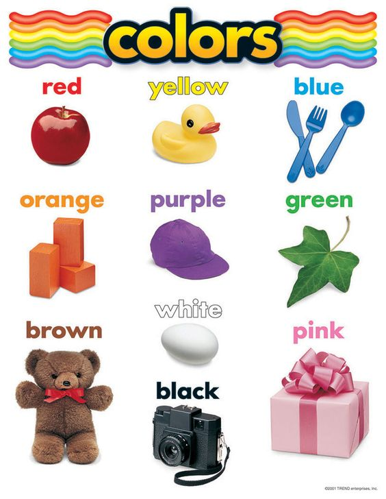 Number Names Worksheets preschool color chart : Pinterest • The world's catalog of ideas
